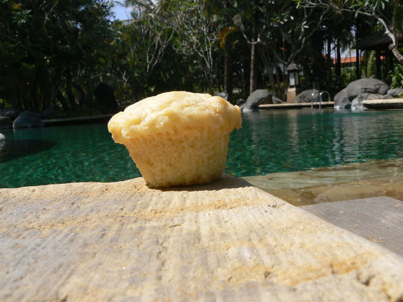 Blue Skies Inn Muffins Travelling the World